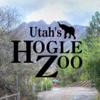 Expired: Free Admission Days at Utah's Hogle Zoo