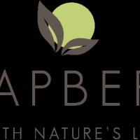 Free Soapberri Body Wash