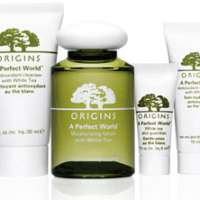 Expired: Free Origins Winter Skin Care Sample Kit and Complimentary Mini Facial