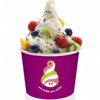 Free $5 Frozen Yogurt at Menchies on Your Birthday