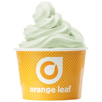 Expired: Free Frozen Yogurt at Orange Leaf for Moms on May 10th (Mother's Day)