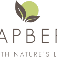 Expired: Free Soapberri Body Wash